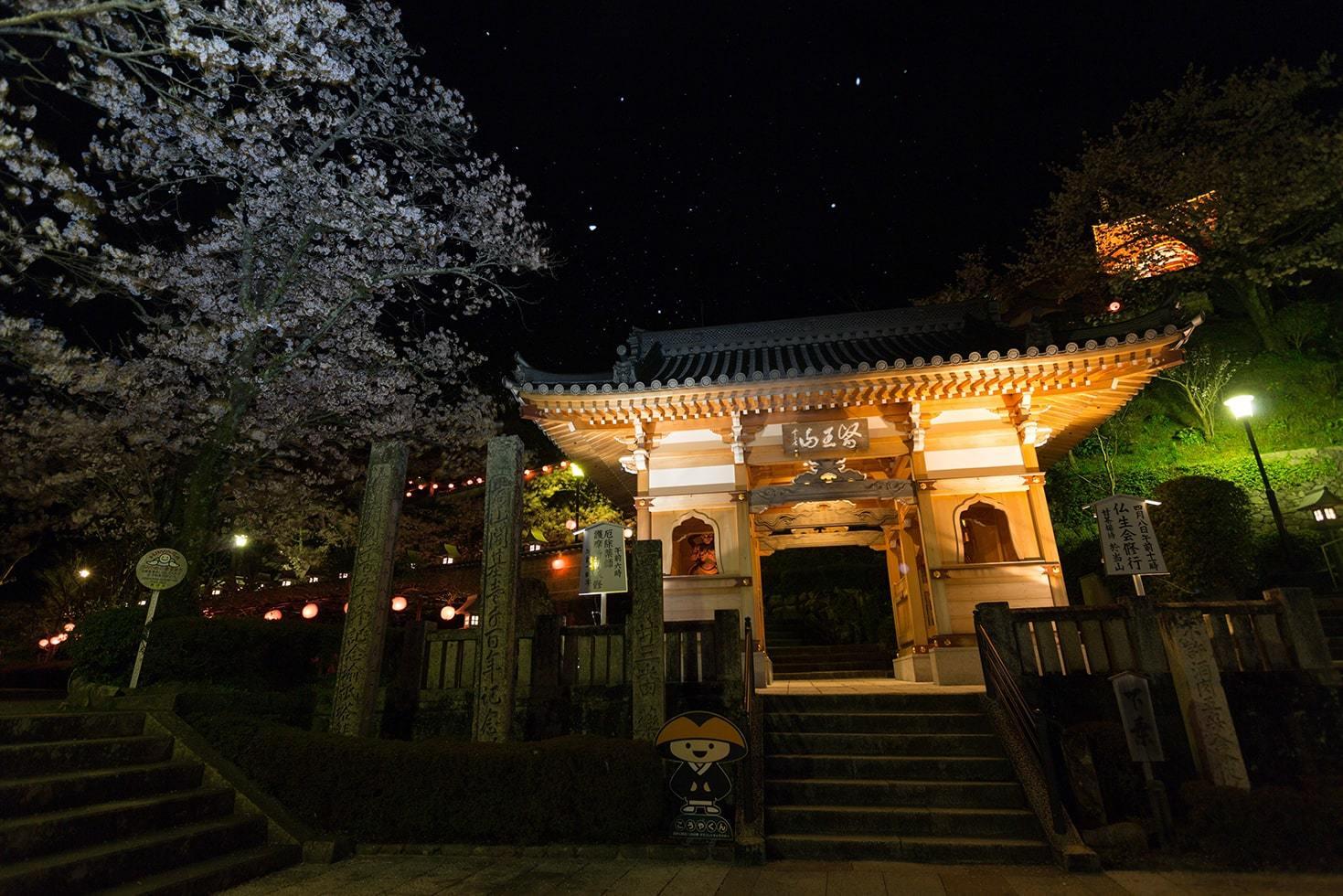 薬王寺写真
